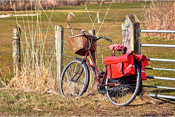Das Ferienhaus Texel | Fahrrad